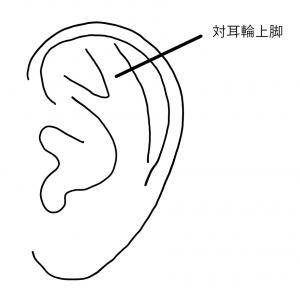 耳介形成 イメージ